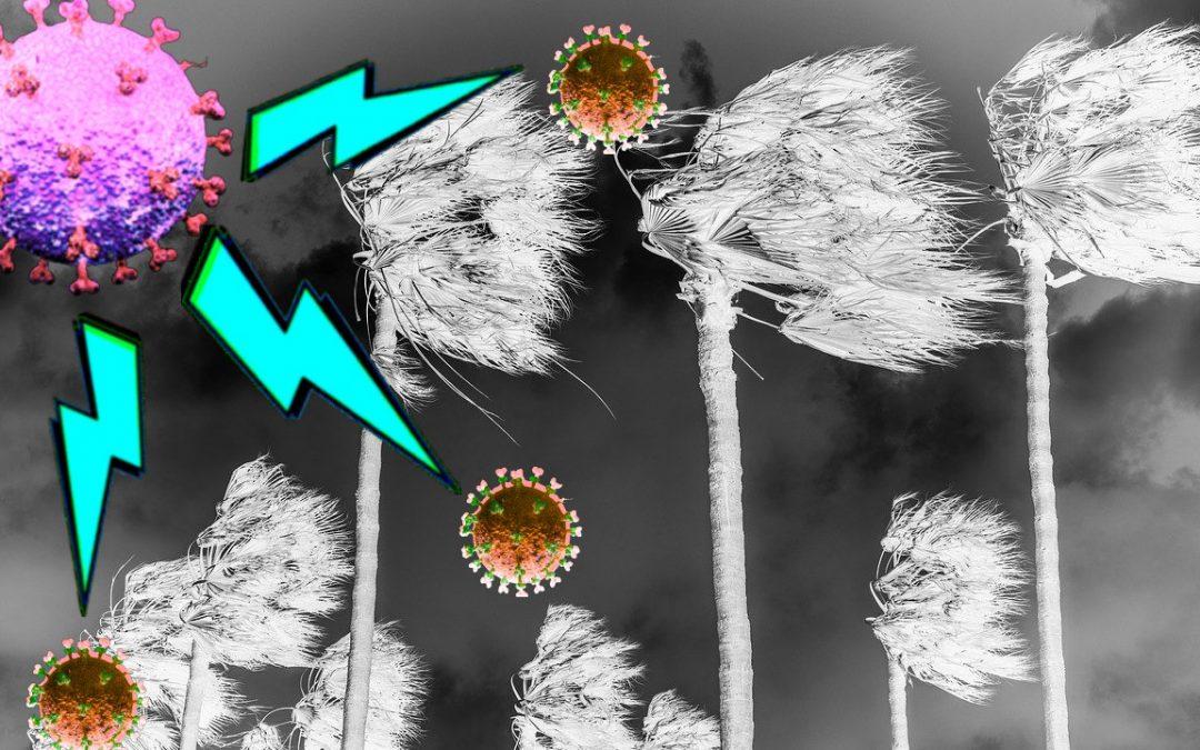 Cytokine Storm and COVID