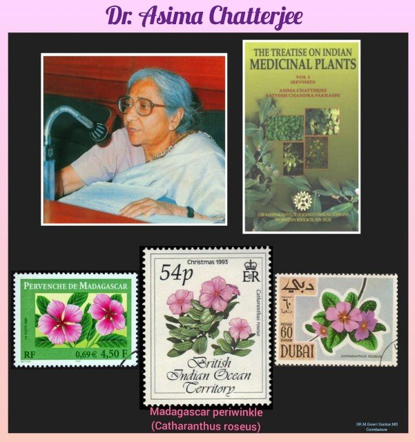 History Today in Medicine – Prof. Dr. Asima Chatterjee