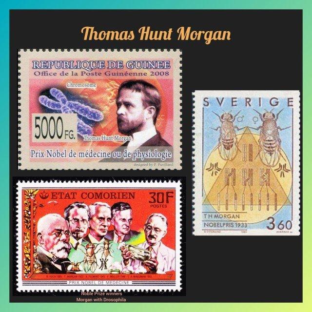 History Today in Medicine – Dr. Thomas Hunt Morgan