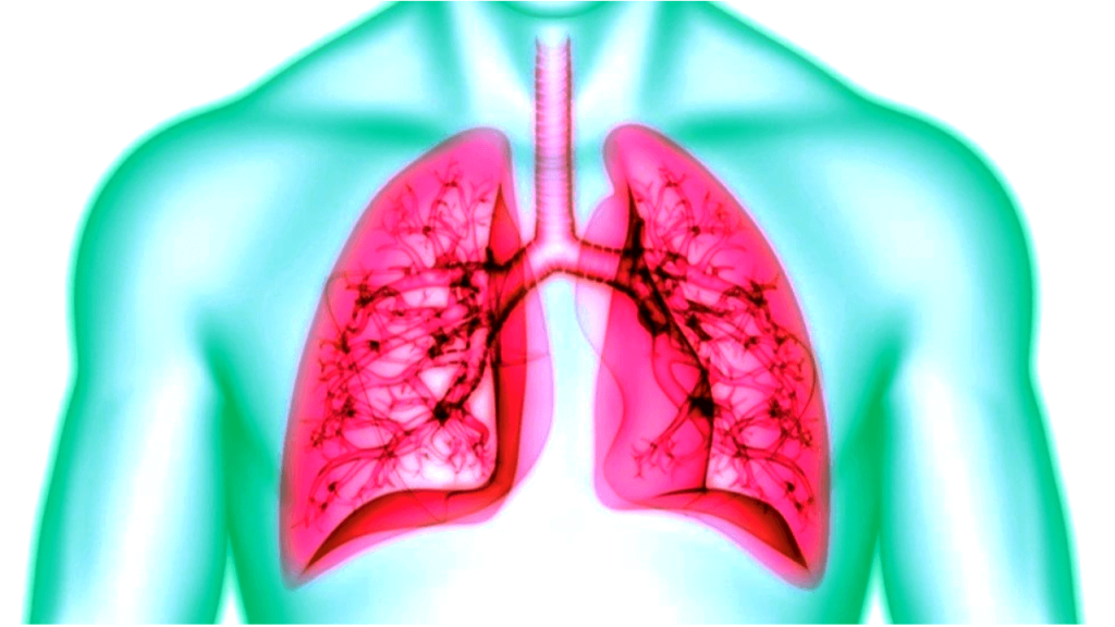 Hope and Hype in post-COVID Lung Fibrosis