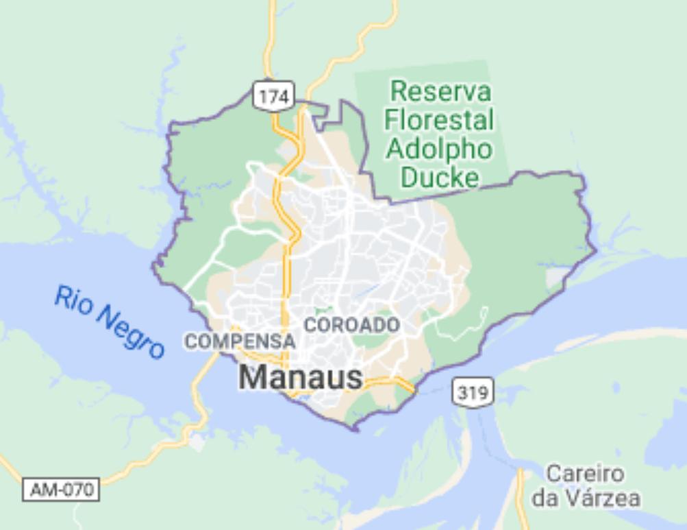 Manaus, Brazil - Herd Immunity