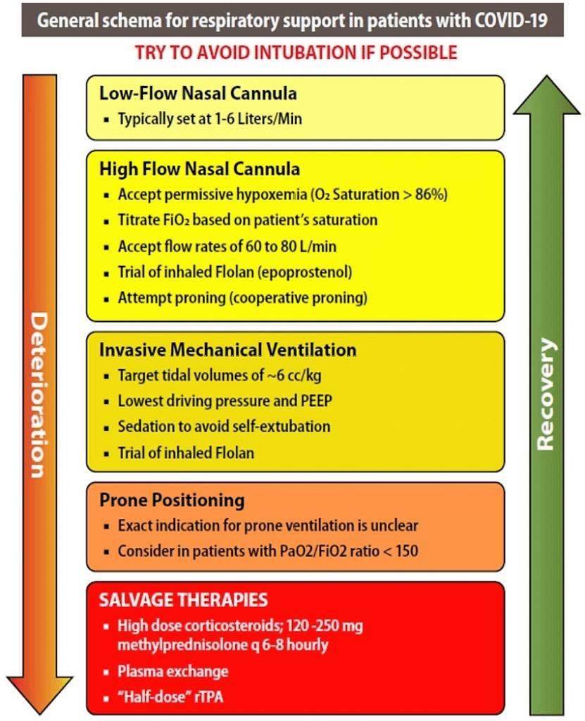 CME INDIA Covid-19 management protocol