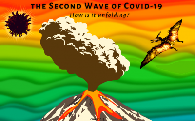 How the Second Wave of Covid is unfolding?