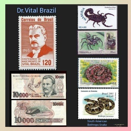 Dr. Vital Brazil