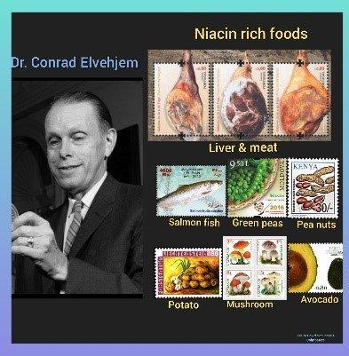 Prof. Conrad Elvehjem