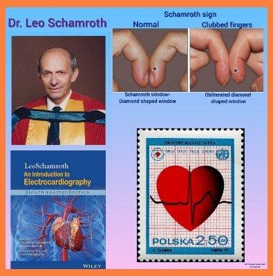 Prof. Dr. Leo Schamroth