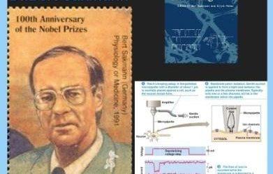 History Today in Medicine – Dr. Bert Sakmann