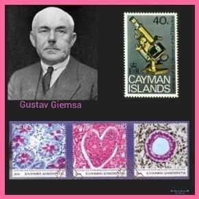 Gustav Giemsa