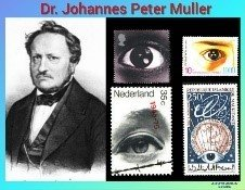 History Today in Medicine – Dr. Johannes Peter Muller