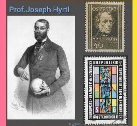 History Today in Medicine – Dr. Josef Hyrtl