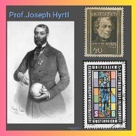 Dr. Josef Hyrtl