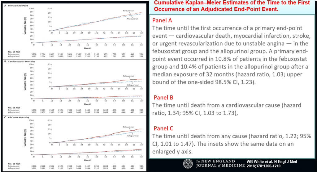 Is Febuxostat Safe in Hyperuricemia with History of Cardiovascular Disease?